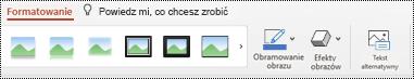 Przycisk tekst alternatywny na Wstążce obrazu w programie PowerPoint dla komputerów Mac.