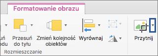 Przycisk Przytnij na karcie Formatowanie obrazu