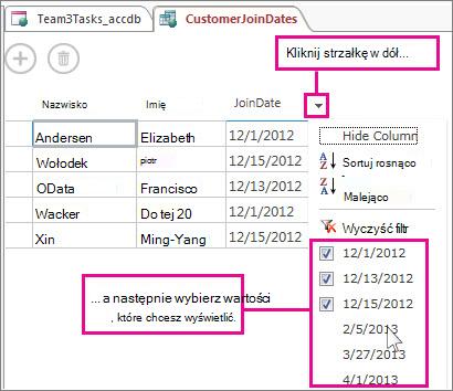 Filtrowanie kolumny w kwerendzie w aplikacji programu Access.