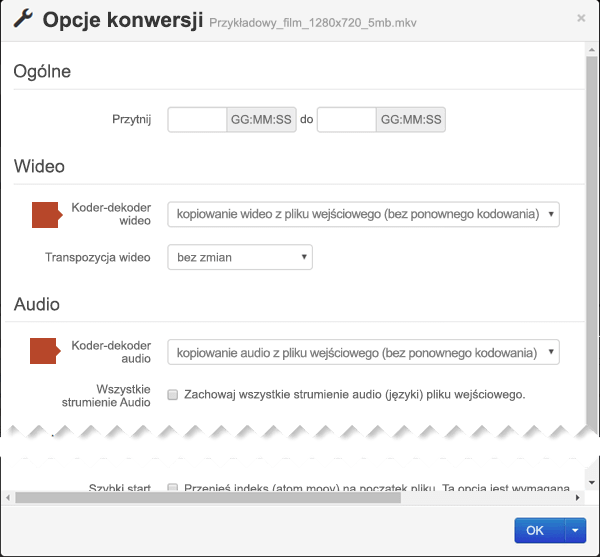 Okno dialogowe Conversion Options (Opcje konwersji) z opcjami dla koderów-dekoderów dźwięku i wideo