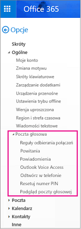 Opcje poczty głosowej w okienku opcji poczty e-mail w programie Outlook