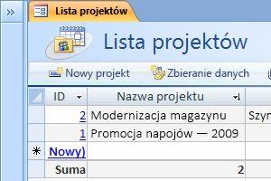 Szablon bazy danych Projekty