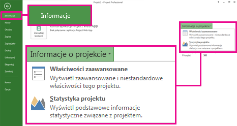 Menu Informacje o projekcie z wyróżnioną pozycją Właściwości zaawansowane
