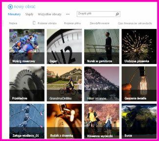 Zrzut ekranu: Biblioteka elementów zawartości w programie SharePoint. Widoczne są miniatury kilku plików wideo i obrazów zawartych w bibliotece. Widać także standardowe kolumny metadanych dla elementów multimedialnych.