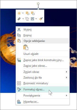 Zrzut ekranu przedstawiający opcje formatowania obrazu w programie Publisher