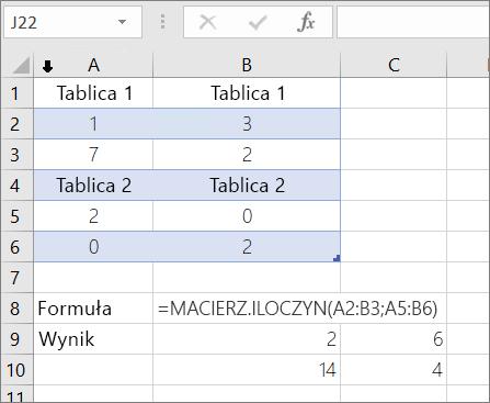 Macierz, funkcja — przykład 1