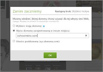 Ustawienia wstępne w witrynie GoDaddy: wpisywanie domeny zarejestrowanej w innym miejscu