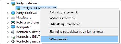 Przejdź do Menedżera urządzeń systemu Windows, aby zarządzać sterownikami karty wideo.