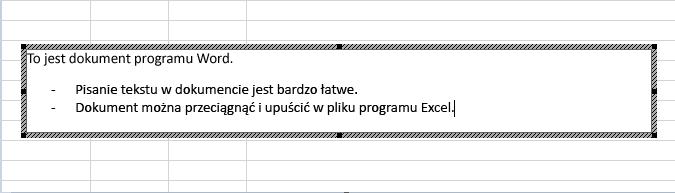 Ten obiekt osadzony jest dokumentem programu Word.