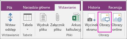 Zrzut ekranu przedstawiający przycisk Wstaw obrazy w programie OneNote 2016.