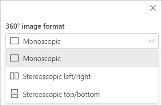 Opcje formatu obrazu 360
