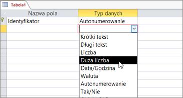 Lista typów danych z wyróżnioną pozycją Duża liczba