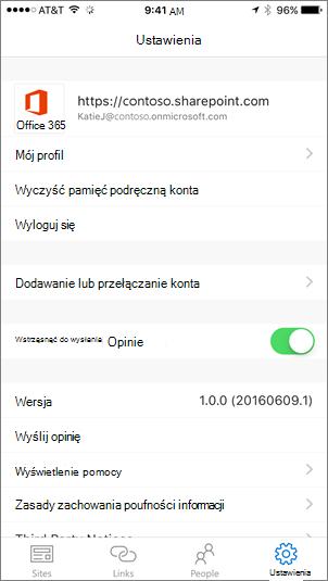 Częściowy zrzut ekranu przedstawiający kartę Ustawienia aplikacji programu SharePoint