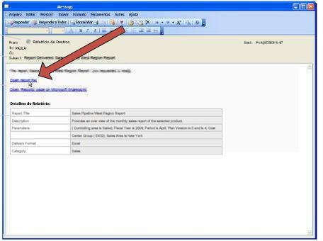 Quando o Duet disponibiliza um relatório, ele envia uma mensagem de notificação por email.