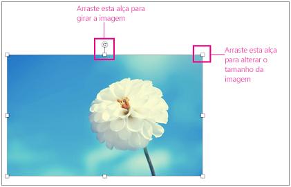 Imagem com alças de redimensionamento realçadas