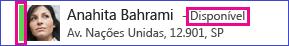 listagem do contato com barra de status verde e texto escrito disponível