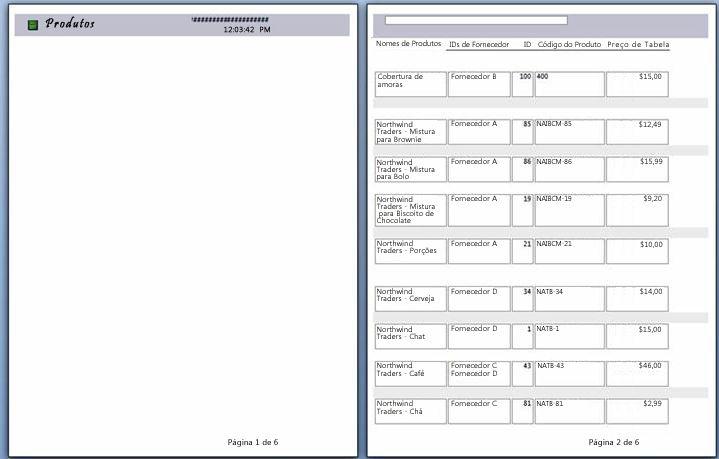 visualização de páginas do relatório com quebra de página aplicada