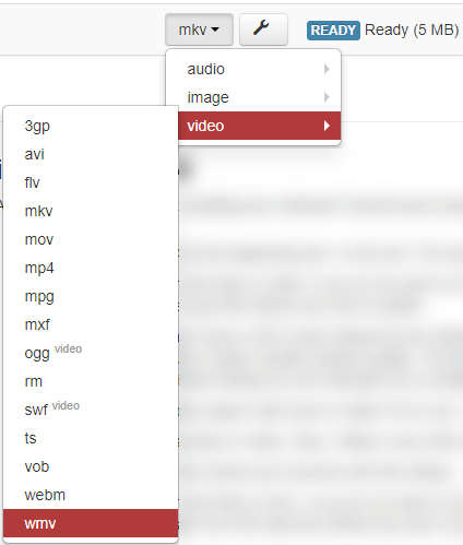 As opções apresentadas abaixo do botão Formatar permitem especificar o formato de mídia para o qual você pretende converter