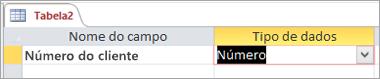 Nome do primeiro campo e tipo de dados de uma nova tabela do Access