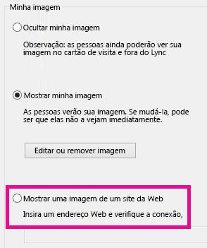 Captura de tela da seção da janela de opções minha imagem do Lync com a imagem selecionada de um site destacada
