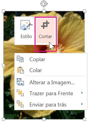 Clique com o botão direito do mouse na imagem, então clique em Cortar