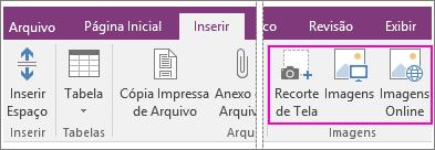 Captura de tela das opções Inserir imagens no OneNote 2016.