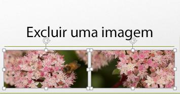 Ao manter pressionada a tecla Control, você pode selecionar mais de uma imagem.