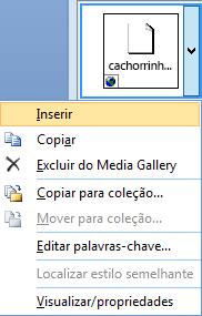 Para inserir uma imagem, clique com o botão direito do mouse a uma imagem em miniatura e selecione Inserir.