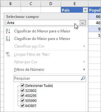 Menu Filtro, menu Exibir Valor, campos de tipo de dados vinculado listados