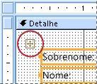 um seletor de layout em um formulário no modo design
