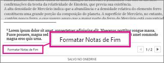 Botão Formatar Notas de Rodapé na área de edição de notas de rodapé do Word Online