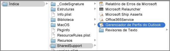 Mostrar o conteúdo do pacote para o Outlook