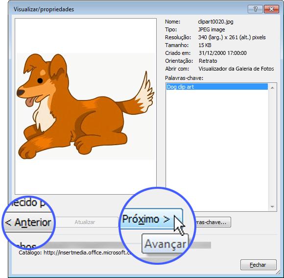 Navegue pelas imagens selecionando os botões Anterior ou Próxima na caixa de diálogo Visualizar/propriedades.