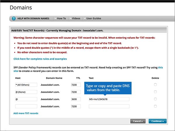 Digite ou cole os valores nas caixas do novo registro