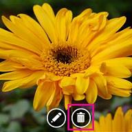 Caixa de foto alterar com botão de fotos de excluir realçado