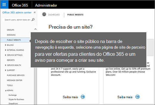 No Office 365, escolha Site público