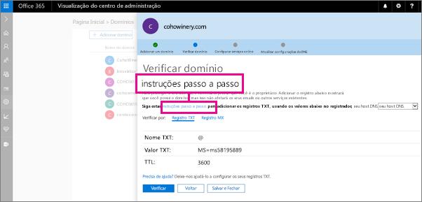 Na página Verificar, siga as instruções para adicionar um registro TXT ao host DNS