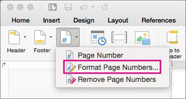 Para formatar os números de página, clique em Número de Página na guia Cabeçalho e Rodapé e, em seguida, clique em Formatar Números de Página.