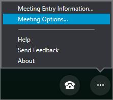 Menu Mais opções com as opções de Reunião selecionadas