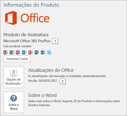 Captura de tela da página Conta mostrando o nome e o número completo da versão do produto do Office