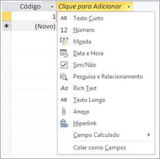 Trecho de tela do menu suspenso Clique para adicionar tipo de dados