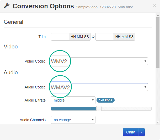 A caixa de diálogo Opções de Conversão tem opções para codec de vídeo e de áudio