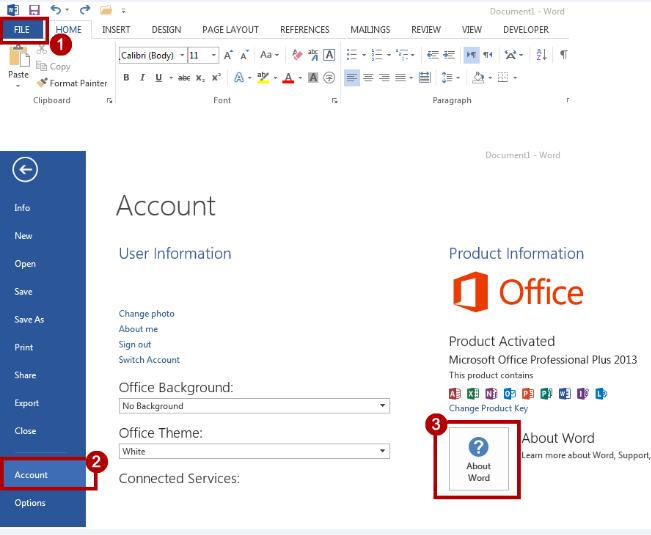 Determine Office 2013 version