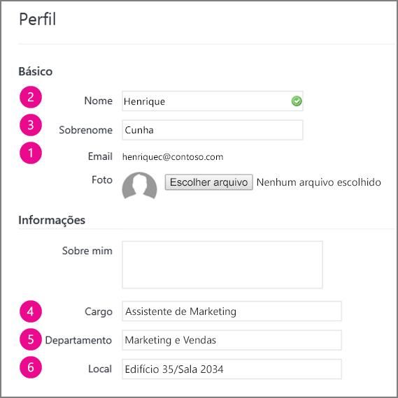 Captura de tela dos campos de perfil que estão sincronizados no Yammer
