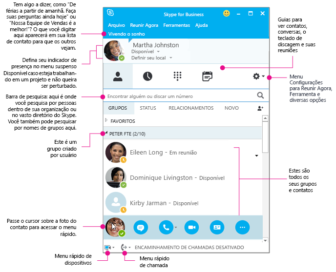 A janela de Contatos do Skype for Business diagramada