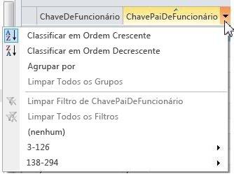 Opções de classificação, agrupamento, filtragem em listas externas