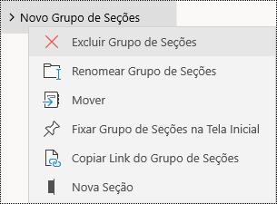 Excluir grupos de seção no aplicativo OneNote para Windows 10