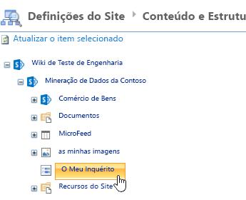 Na janela do Gestor do Site, clique em inquérito na barra de iniciação rápida