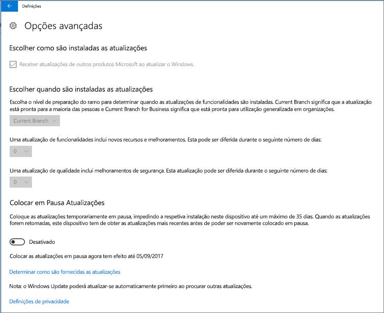 Opções avançadas do Windows de atualizações são todas cinzento.