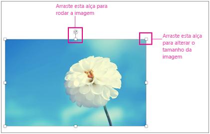 Imagem com as alças de redimensionamento realçadas